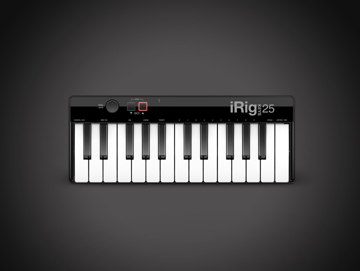 IRIG KEYS 25-irigkeys25:305